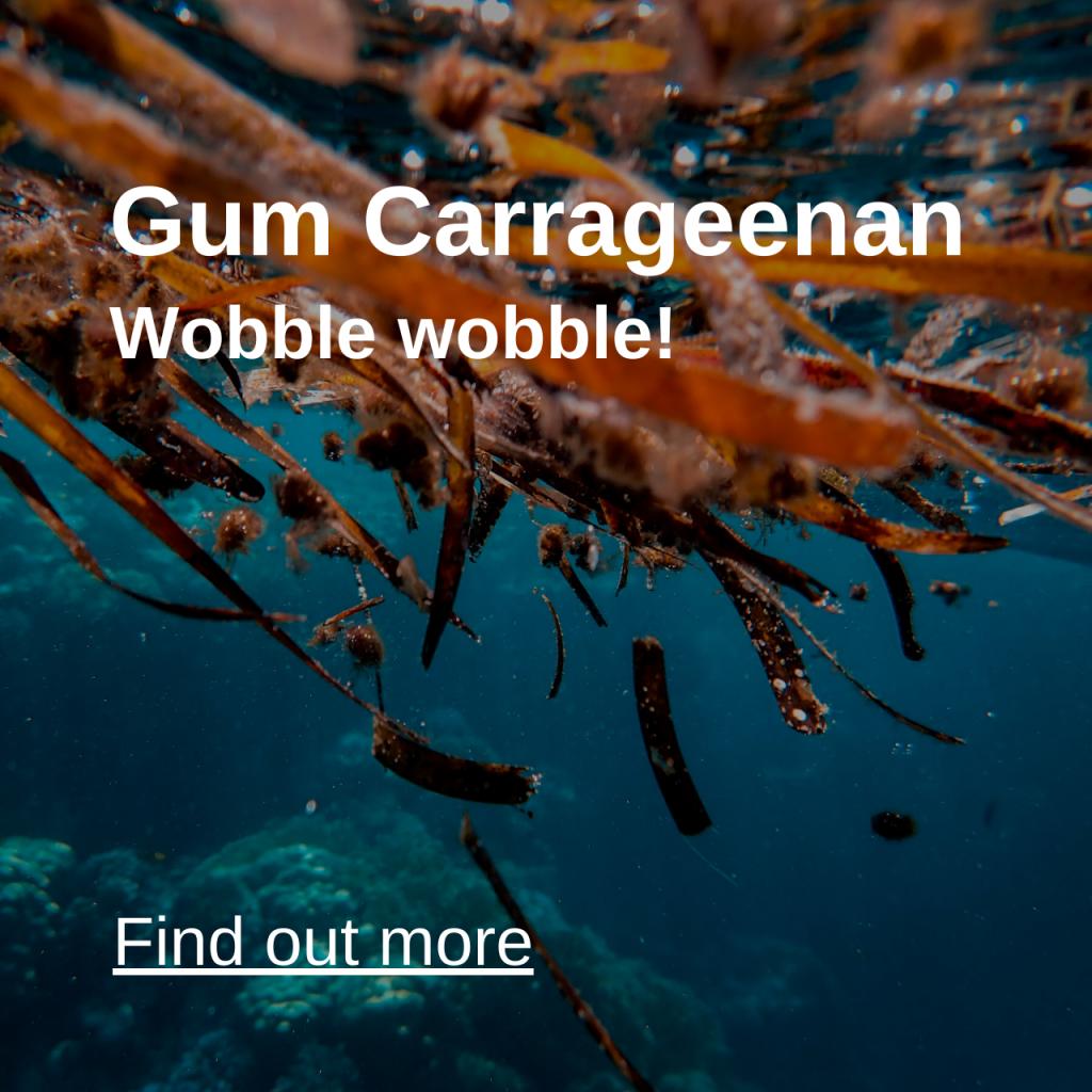 Carrageenan Gum